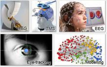 Магистерская программа «Когнитивные науки и технологии: от нейрона к познанию»